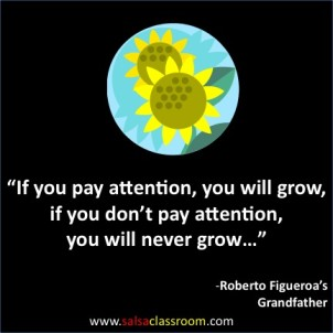 If You Pay Attention, You Will Grow